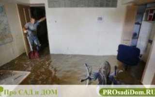 Акт осмотра квартиры после затопления образец