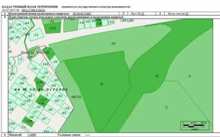 Кадастровый план земельного участка это