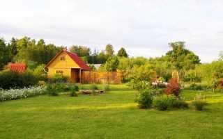 Договор купли продажи дачного участка с домом