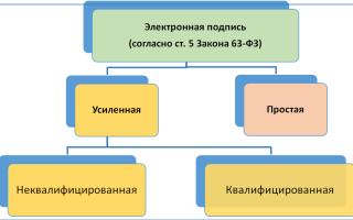 Выписка из ЕГРЮЛ с электронной подписью налоговой 2019 — 2020