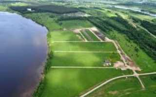 Аренда земельных участков сельхозназначения