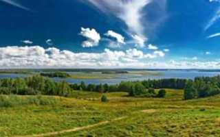 Аренда земли в ленинградской области у государства